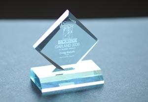 The 2011 Garland Awards